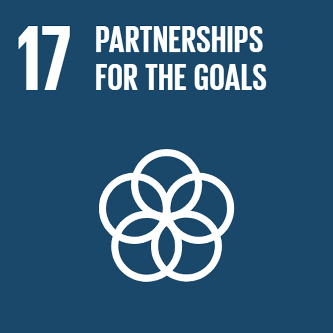 partnerships-goals-icon.png